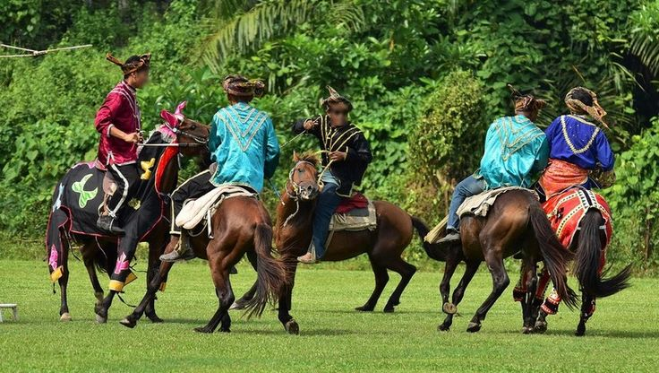 Le Bajau - Le Bajau lors d'un jeu équestre