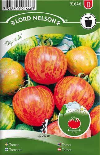 SOLANUM lycopersicum  Tomaatti 'Tigerella' Jännittävä raidallinen, aikainen lajike. Hedelmät ovat kypsinä keskisuuria, punaisia ja kultaraitaisia ja maistuvat herkullisilta. Kanta ei viherry. Latvotaan taimen kasvettua toivotun korkuiseksi. Esikasvatetaan. Riittää 15 taimeen.