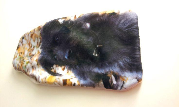 La foto del tuo cane o gatto stampata su un copri borsa dell'aqua calda