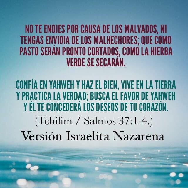 Disponible Biblia Versión Israelita Nazarena visita la página oficial www.elcandelerodeluz.org   Shalom!