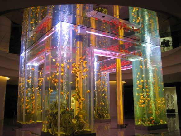 There's just something about aquariums that are so damn cool (31 Photos)