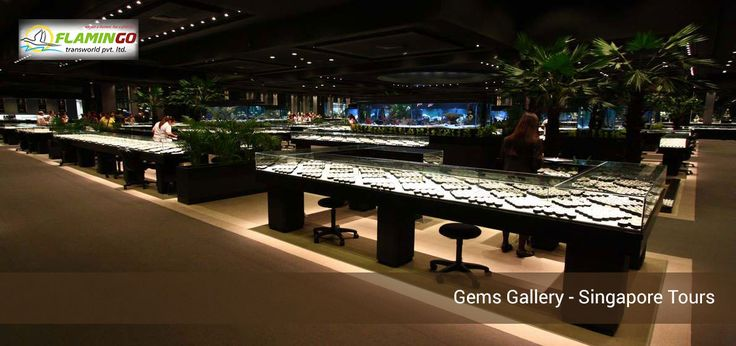 Book Gems Gallery Singapore Tours with our Singapore Tour Packages at Flamingo Transworld.