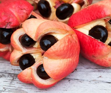 World's Weirdest Exotic Fruits- Page 7 - Articles | Travel + Leisure