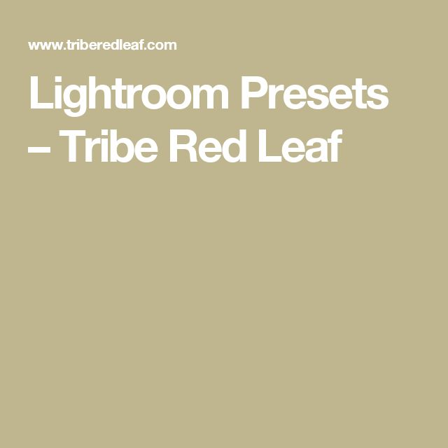Lightroom Presets – Tribe Red Leaf
