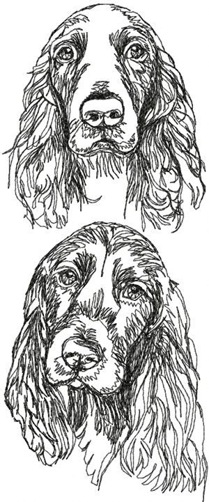 Advanced Embroidery Designs - Field Spaniel Set