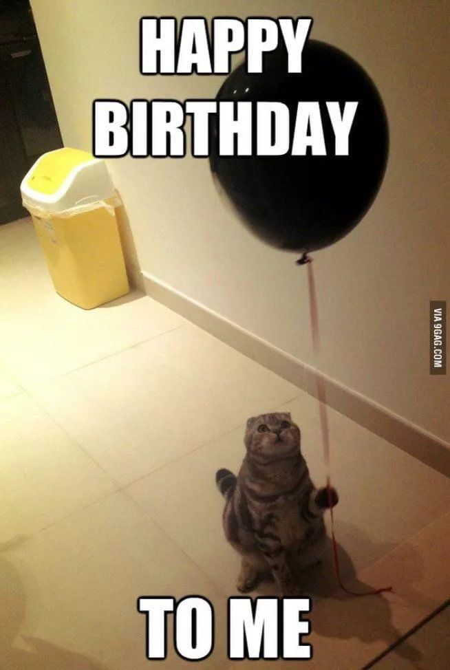 Today S My Birthday Show Me Some Love 9gag Birthday Girl Quotes Happy Birthday Quotes Funny Birthday Quotes Funny