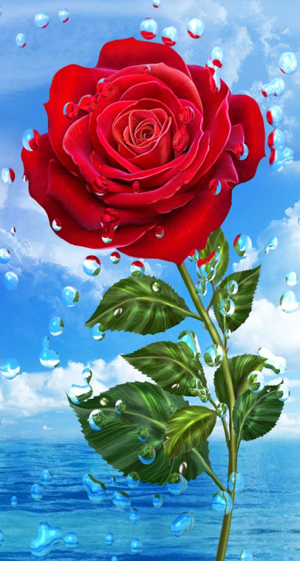 Яндекс новым, открытки для телефона цветы