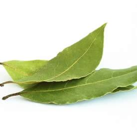 17 best images about plantes aromatiques aromatic plants on pinterest cuisine mars and action - Plantes aromatiques cuisine ...