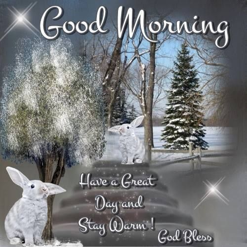 The 613 best good morning blessings days of the week images on good morning have a great day and stay warm m4hsunfo