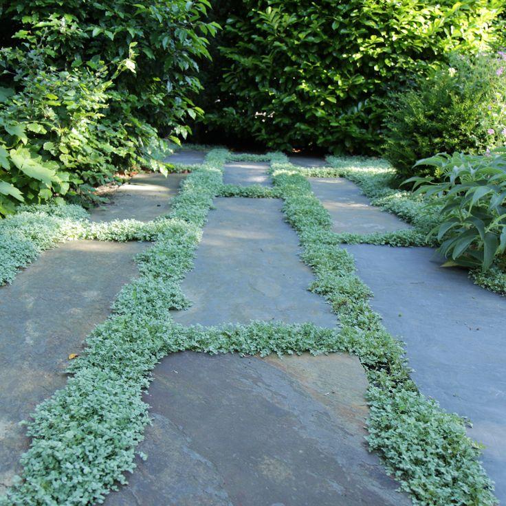 Prachtige langwerpige leistenen tegels, geven een geweldig mooi effect in de tuin.