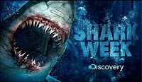 Shark Week 2013* :: Return of Jaws, Megalodon The Monster Shark Lives, Voodoo Shark, I Escaped JAWS, more coming...
