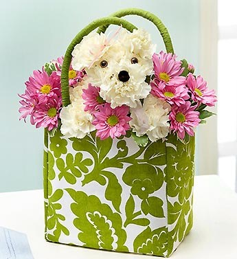 Puppy Dog Floral Arrangement :)  #flowers #floral #dog #puppy #gift #mothersday #daisies