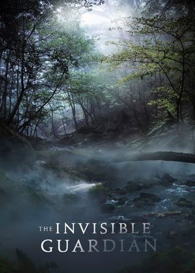 "Check out ""The Invisible Guardian"" on Netflix 