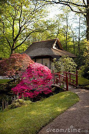 Spring In Japanese Park Copyright Ariadna De Raadtt