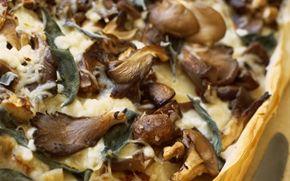 Svampepie med hytteost Skøn tærte med en bund af filodej og cremet fyld af kartofler og svampe. Server med bønner og groft brød.
