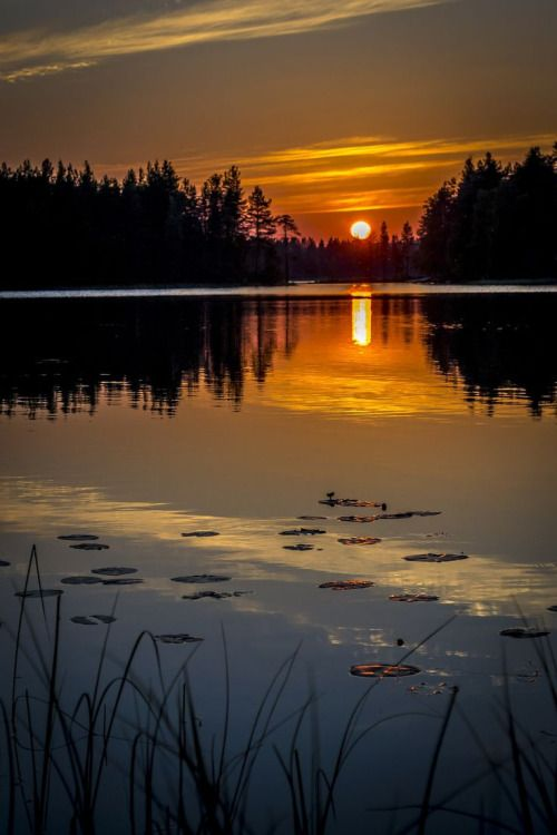 orchidaorchid:  Sunset in Kuusamo by Tomppa R on 500px