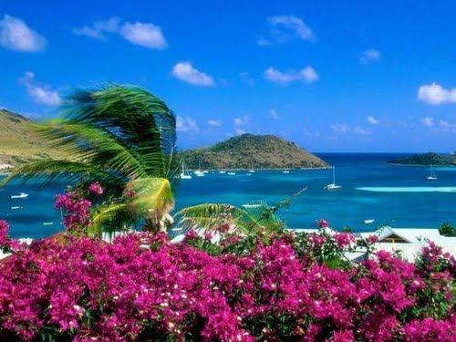 Fiori e Mare #Jamaica