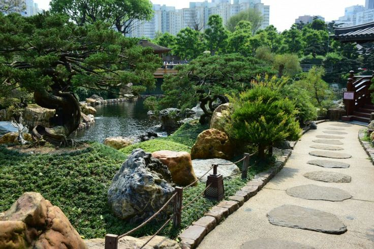 Pond in the Nan Lian Garden are the trees not just fantastic!