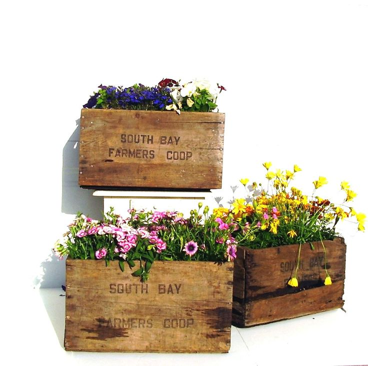 Vintage Wooden Crate Rustic Flower Planter Box - If I can find old crates that don't have meaning to me and are cheap, I love this idea.  Not only for outdoors but for indoor planting as well (Obviously would need to line the crate)...
