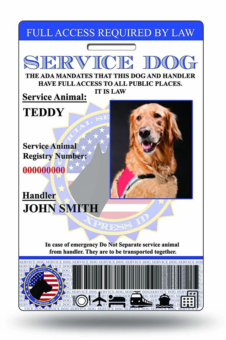 Holographic Service Dog ID Card (Custom) Includes