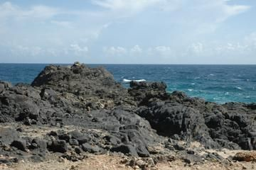 Explore Aruba on land and in sea! From the comfort of an air-conditioned bus, your professional tour guide will show you some of the main highlights and attractions on the island. Learn about the history of these landmarks and enjoy beautiful scenery! Visit California Lighthouse, the famous Natural Bridge and beautiful Arashi Beach plus more! View more tour in Aruba at: http://ow.ly/UOkc6
