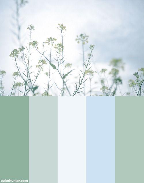 Quiet Color Scheme