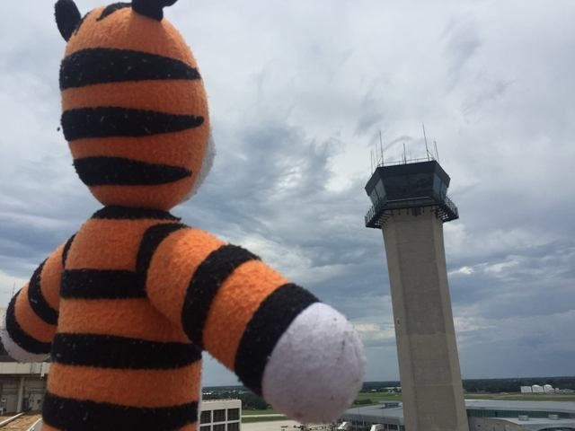 Left behind, boy's stuffed tiger goes on big adventure at Tampa International Airport - Story | abcactionnews.com | Tampa Bay News, Weather, Sports, Things To Do | WFTS-TV
