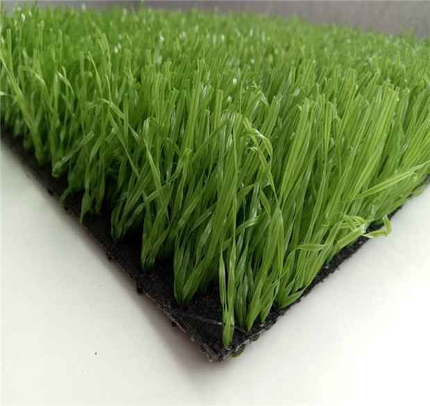 Free sample green artificial grass in Rwanda  Image of Free sample green artificial grass in RwandaOur firm.s principally engaged in making Free sample green artificial grass in Rwanda . Our merchandise have their roots inside a extended time and all of them are granted the certificate of quality. We spare no expense at any expense to adopt sophisticated technologies for generating goods.  More:  https://www.turf8.com/SportArtificialGrass/free-sample-green-artificial-grass-in-rwanda.html