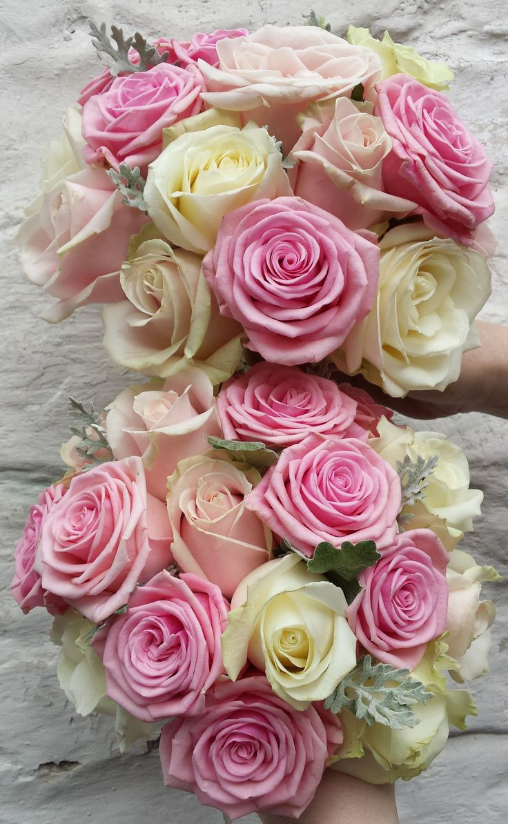 Sweet avalanche, Heaven and Avalanche roses with soft green leaves.