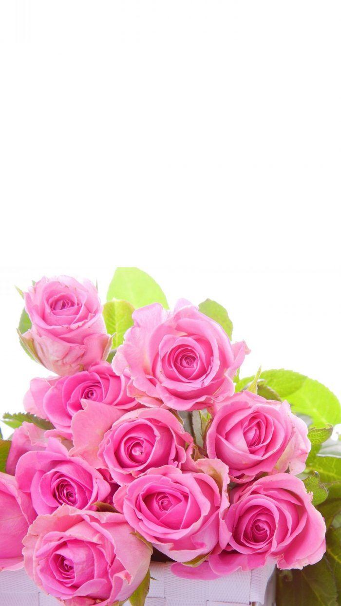 3d Abstract Flower Wallpaper Iphone Flower Iphone Wallpaper Pink Wallpaper Iphone Rose Flower Wallpaper