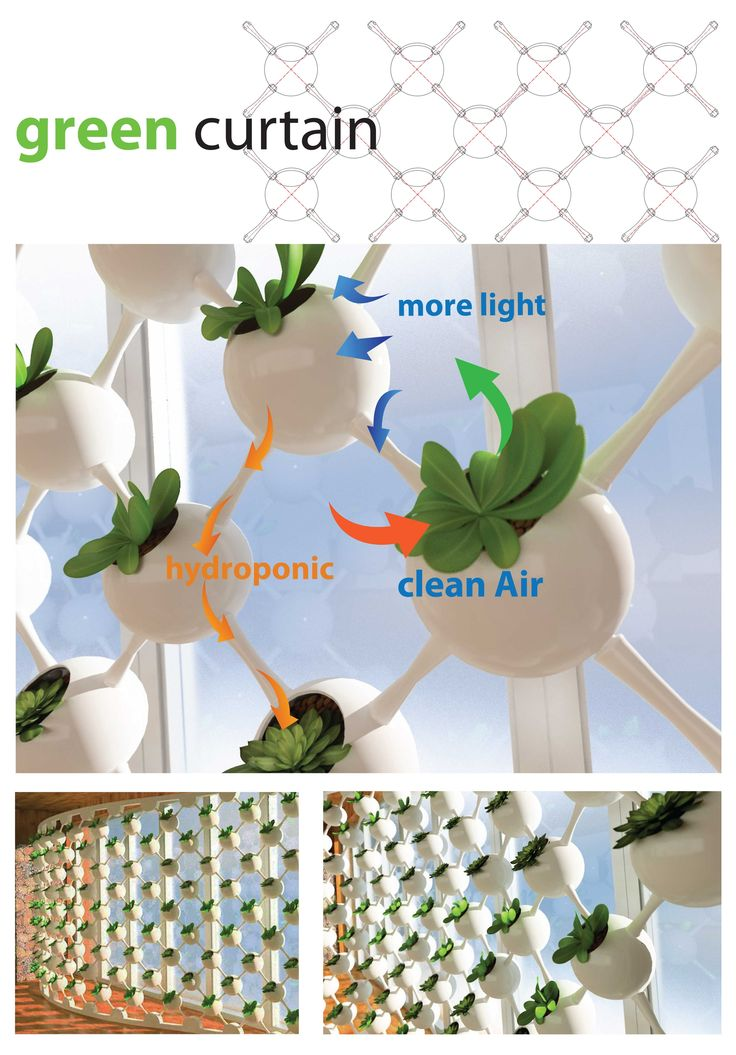 Biophilic Design - Competion Entry