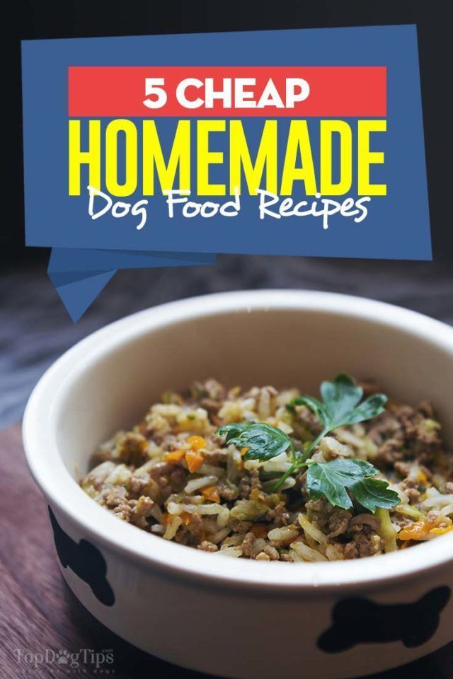 5 Cheap Homemade Dog Food Recipes Dog Food Ideas Of Dog Food