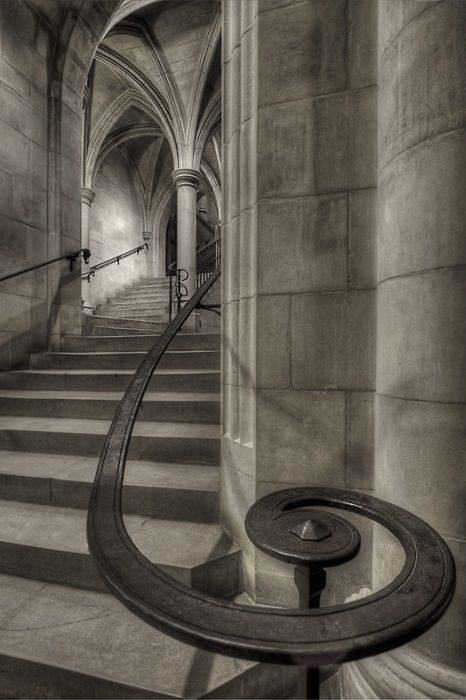 stairs through Gothic arched groin vaults