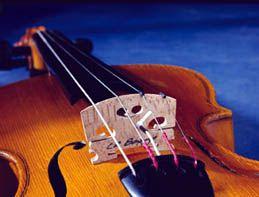 The Violin Bridge - violinstudent.com