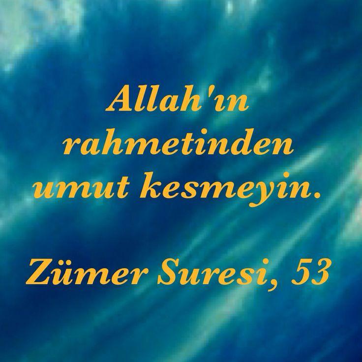 """(Benden onlara) De ki: """"Ey kendi aleyhlerinde olmak üzere ölçüyü taşıran kullarım. Allah'ın rahmetinden umut kesmeyin. Şüphesiz Allah, bütün günahları bağışlar. Çünkü O, bağışlayandır, esirgeyendir."""" [Zümer Suresi, 53]"""