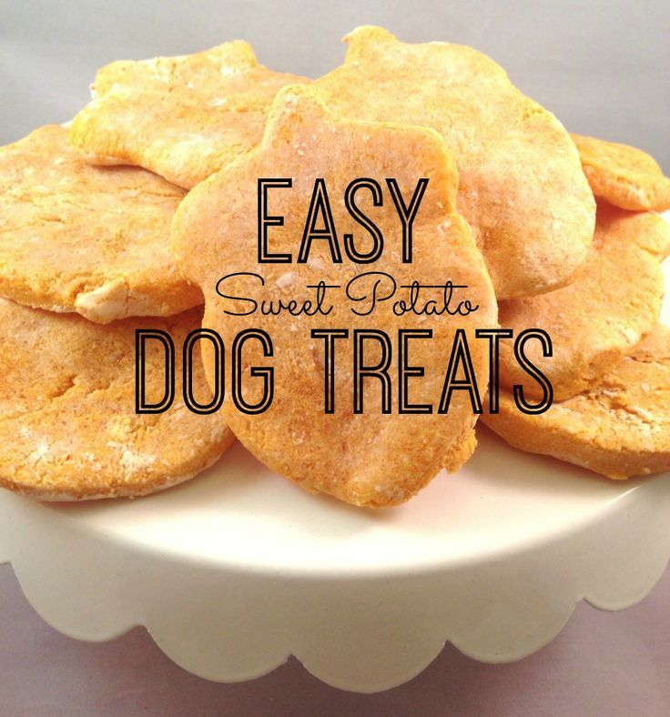 5 Simple Dog Treat Recipes. Easy to make, grain free recipes for your pup! Easy to make, grain free recipes for your pup! Let's face it, dog treats can get pretty expensive and many of us (myself included) have dogs that deal with sensitivities or allergies to certain foods.