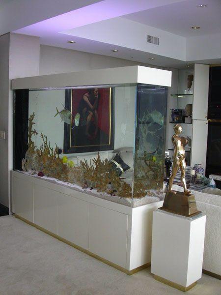 Die besten 25 aquarium raumteiler ideen auf pinterest wandaquarium aquarium und eingebautes - Aquarium ideen ...