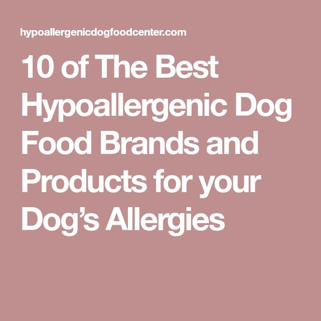 10 of The Best Hypoallergenic Dog Food Brands and Products for your Dog's Allergies