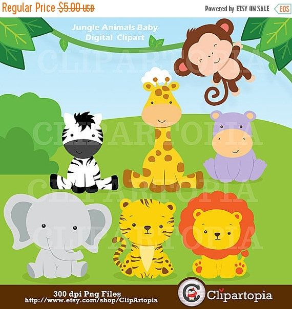 50% OFF SALE Jungle Animals Baby Digital Clipart / by ClipArtopia