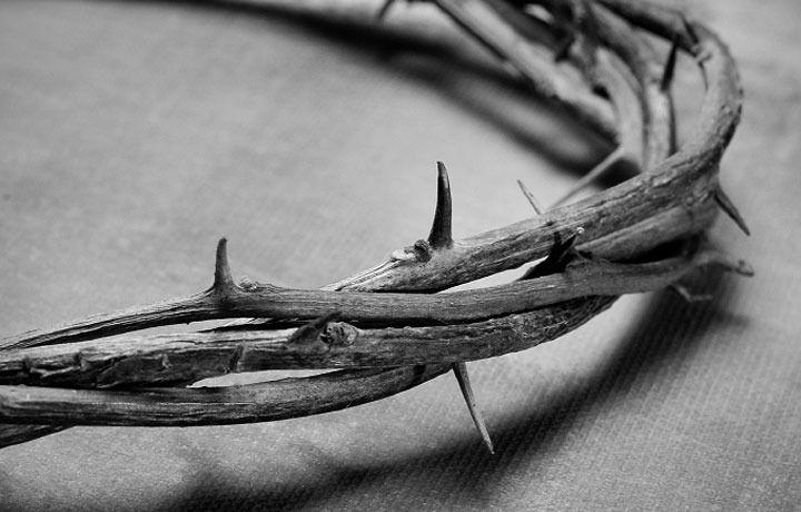 терновый венец иисуса христа: 24 тыс изображений найдено в Яндекс.Картинках