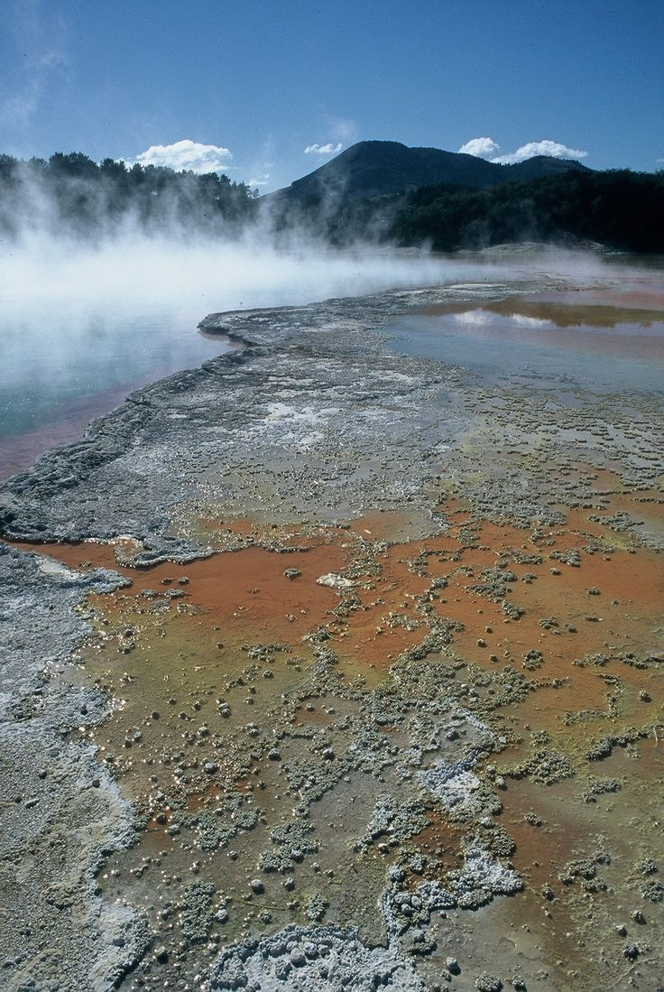 Geothermal activity, Rotorua, NZ - copyright www.belindabrownphotography.co.nz
