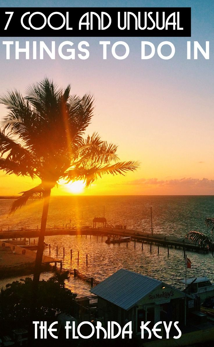 7 cool and unusual things to do in the Florida Keys. Where laid-back meets quirky, the Florida Keys is one of those places where all pre-conceived ideas are thrown out the window. Discover these 7 cool things to see and do in the Keys to make the most of your travels.