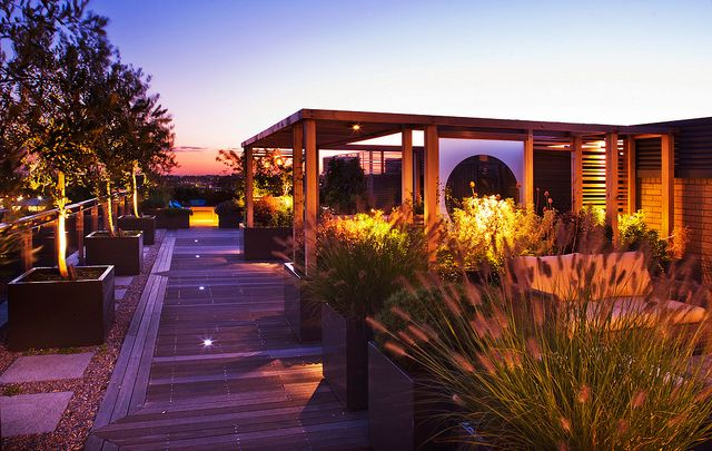 DESIGNER: CHARLOTTE ROWE, LONDON: ROOF GARDEN - DECKED WALKWAY PAST WOODEN PERGOLA AND CONTAINERS PLANTED WITH PENNISETUM HAMELYN AND OLIVE TREES LIT UP AT NIGHT