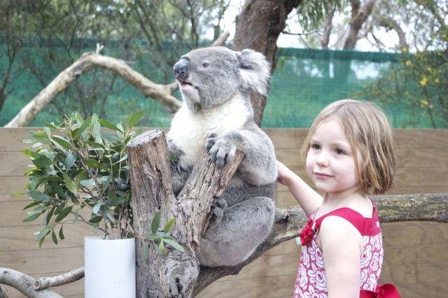 Melbourne with Kids - Moonlit Sanctuary