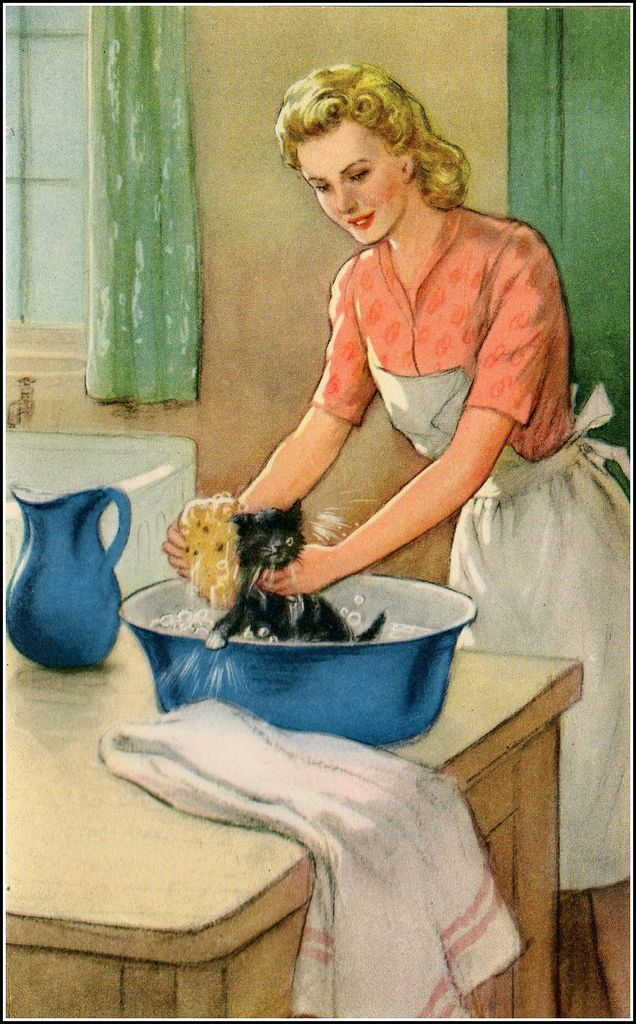"1950's ladybird book ""Tiptoes the mischievous kitten"", illutrated by P. B. Hickling."