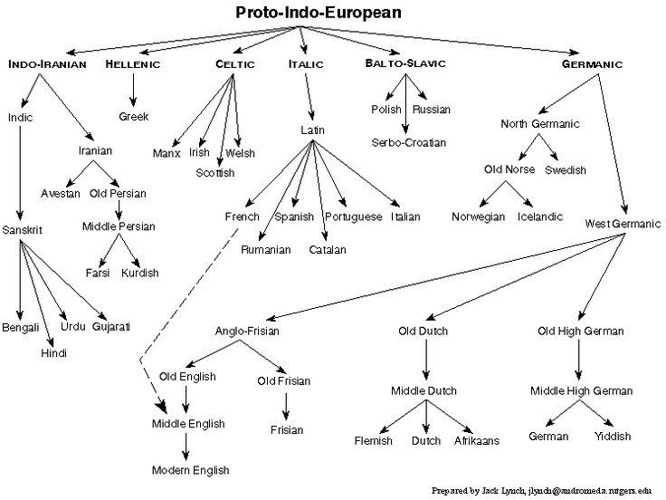 The Indo-European Language  Family Tree.  Relations among some of the languages in the Indo-European family.