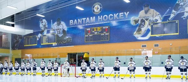 Image result for ice hockey rink grapphics