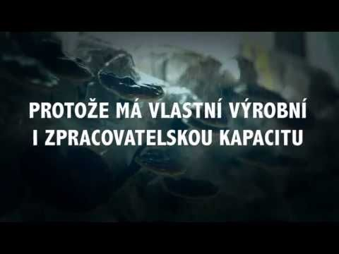 http://dxn.dxnczech.cz