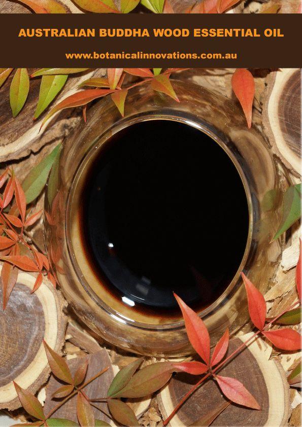 Australian Buddha Wood Essential Oil Sensual, Exotic, Wild Harvested Oil for Perfumes & Fragrances