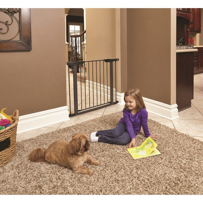 Shop for dog gates at Wayfair. Enjoy Free Shipping & browse our selection of wooden pet gates, freestanding dog gates and wall mounted gates!